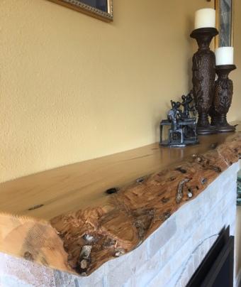 Live edge-teredeo wood-worm wood-slab