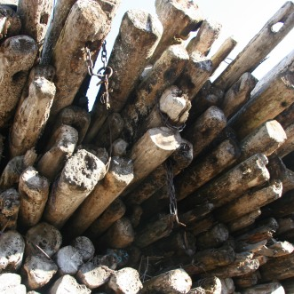 Recycled logs-Trinity River Marine