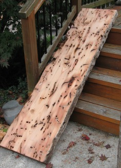 Mantels-Slabs-Wormwood-Recycled Lumber-Trinity River Marine